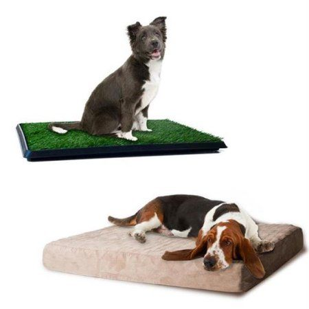 Large Memory Foam Dog Bed and Puppy Potty Trainer Set by Petmaker, Multicolor