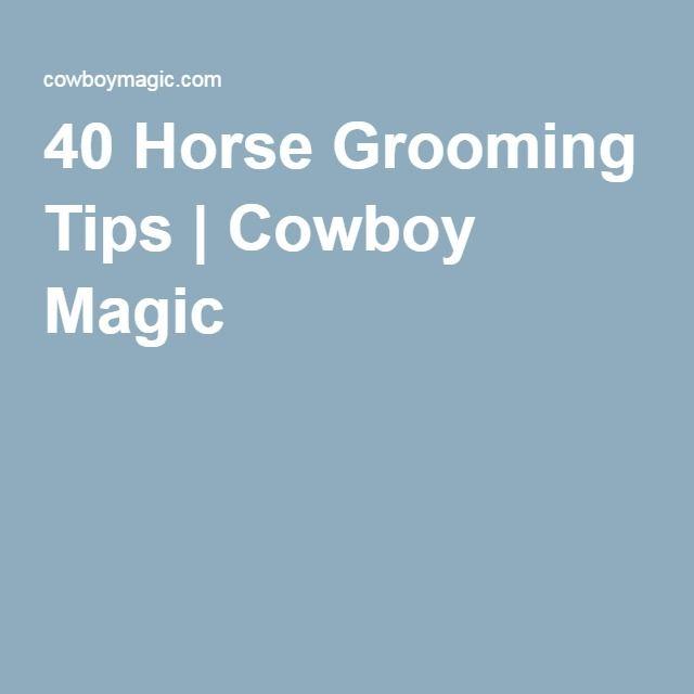 40 Horse Grooming Tips | Cowboy Magic