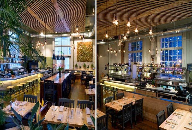 the plant cafe organic sfs ultra green restaurant a