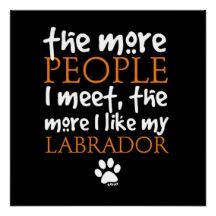 Labrador quote that is so true.
