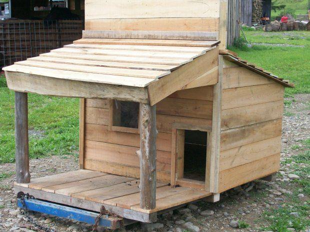 1000 Ideas About Pygmy Goat House On Pinterest Goats