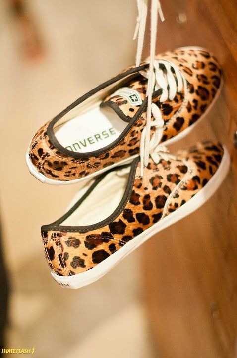 Oh my I think I need these, Leopard Converse