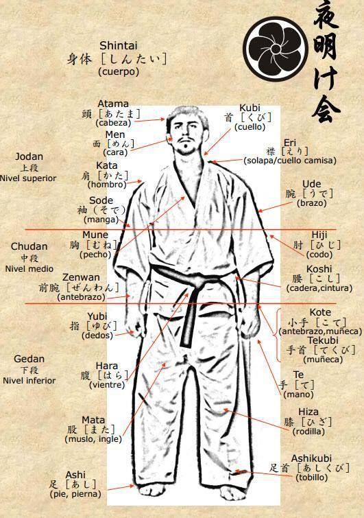 INFOAIKIDO: Aikido - Dibujos