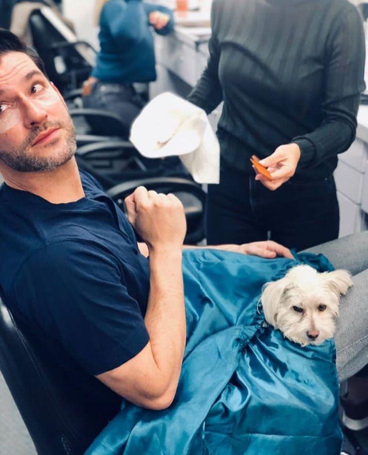 Lucifer Season 4: Tom Ellis In 2019