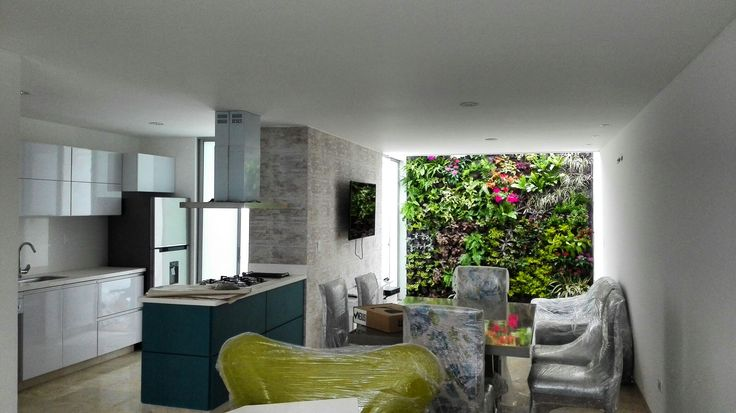 Jardines verticales en el hogar