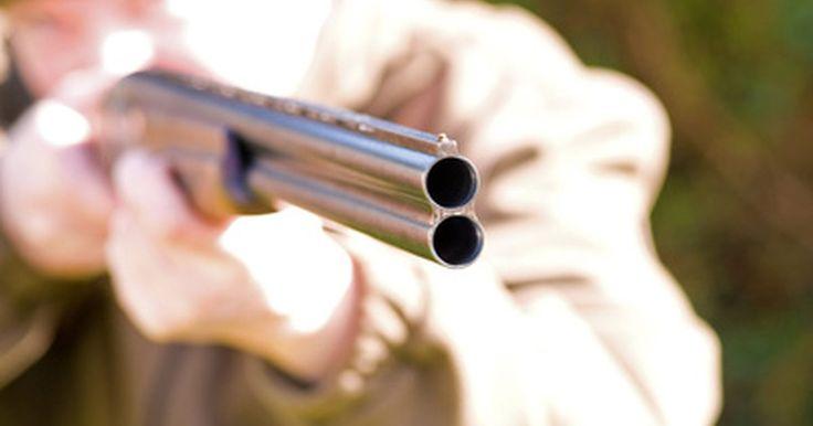 Escopetas de calibre 20 y 12. Las escopetas de calibre 20 y12 son opciones populares entre los cazadores y tiradores deportivos. Ambas son efectivas para la caza de aves y la caza menor, y ambas ocupan un lugar destacado en las competiciones de tiro al plato y tiro al blanco. Las pistolas también vienen en una variedad de modelos, como por ejemplo de un solo cañón, de doble ...