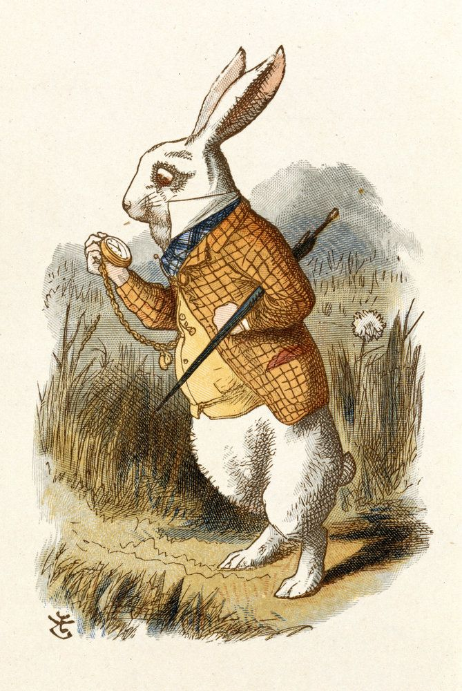 "Sir John Tenniel | ILLUSTRATION | Through the Looking Glass | ""The White Rabbit"""