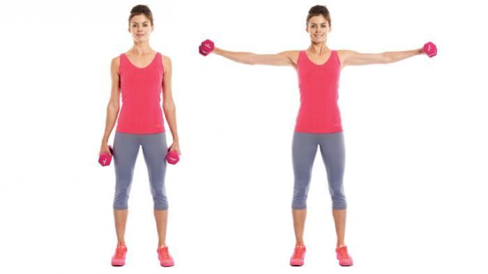exercicios para bracos para mulheres