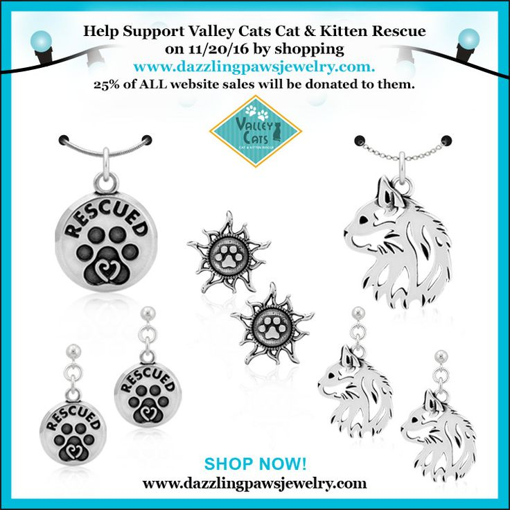 Help Support Valley Cats Cat & Kitten Rescue tonight by placing your order.