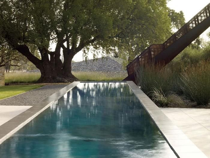 Olive trees, swimming pool, outside dining in California