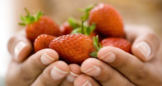 10 #health benefits of #strawberries - It's #winter and the season of strawberries. The red coloured, heart-shaped fruit is not only #delicious to eat but is packed with #nutrients that offer a range of health benefits. #food Originating in France, strawberry has become a popular fruit and flavoring substance all over the world since then. Here are 10 reasons why you should include them in your diet.
