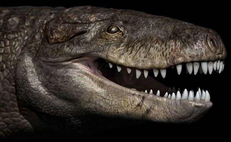 ❝ Este cocodrilo gigante era el terror de los dinosaurios en el jurásico ❞ ↪ Vía: proZesa