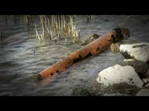 Pelastetaan Itämeri yhdessä - YouTube