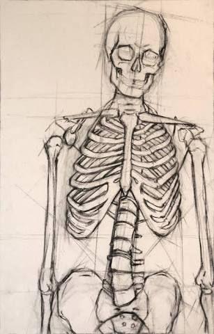 Image result for skeleton drawing