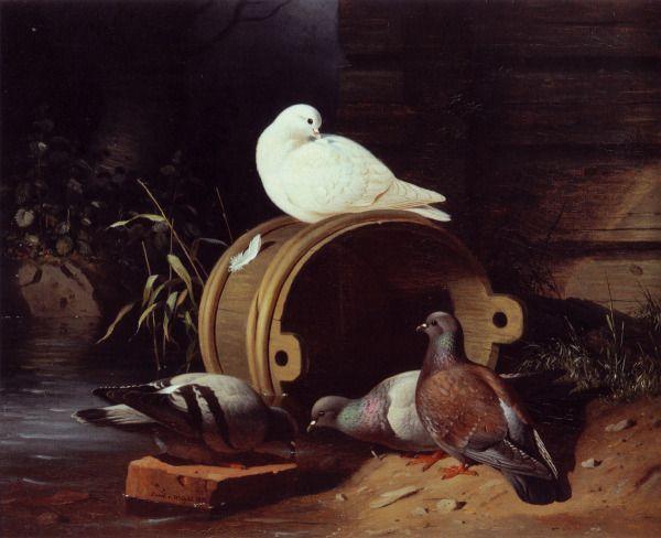 """""""Kyyhkysiä Kaatuneen Saavin Ympärillä"""" (1870) Ferdinand von Wright (1822-1906) - Ferdinand von Wright asui suurimm.osan elämästään kotikartanossaan Haminalahdessa ja sen vierelle rakennuttamass.pienessä talossa,jolle hän antoi kuvaavasti nimen Lugnet,Rauha.Etäällä pääkaupung.tapahtumista ja taide-elämän uusista tuulista Ferdinand jatkoi vuosikymmenestä toiseen lintujensa ja lähiympärist.kuvaamista."""