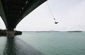 bungy jump - Google Search I feel bungy jumping would be scary but I'd still want to do it.