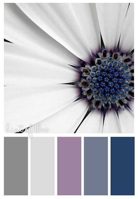 """""""Hint of Blue"""" Definitely the winner for the color scheme I am going to follow."""