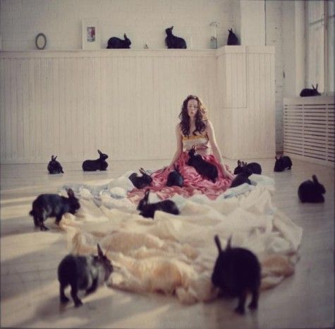 Instead of being a crazy cat lady, I want to be a crazy rabbit lady.