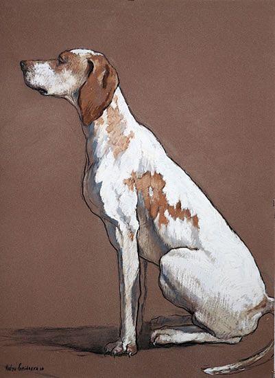 Hester byKatya Gridneva - This is a beautiful dog portrait! so simple