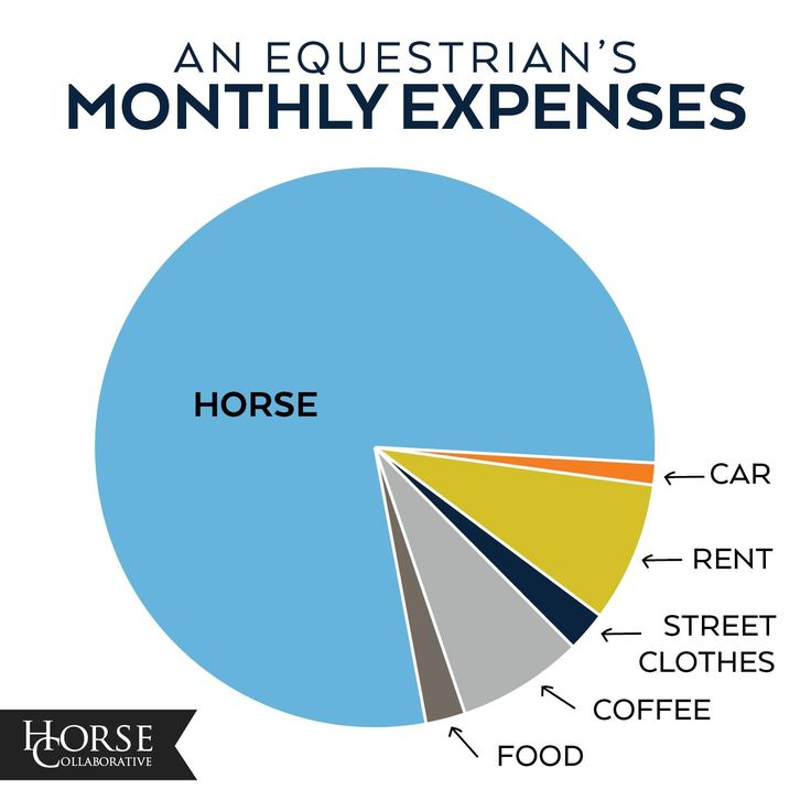 That looks about right!  Horses, Horse, Pony, Equestrian, Dressage, Eventing, Cross Country, Show Jumping, Hunter Jumper, Horse Show