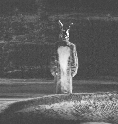 Frank the Rabbit / Donnie Darko
