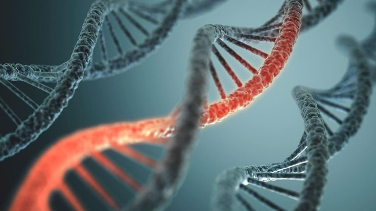 Viral 'fossils' in our DNA may help us fight infection