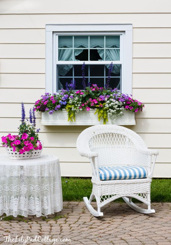 5 Gorgeous Window Box Tips by The Lilypad Cottage