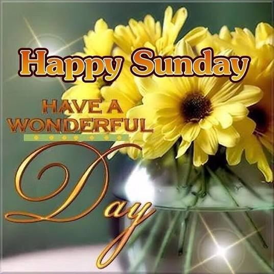 Happy Sunday, Have A Wonderful Day