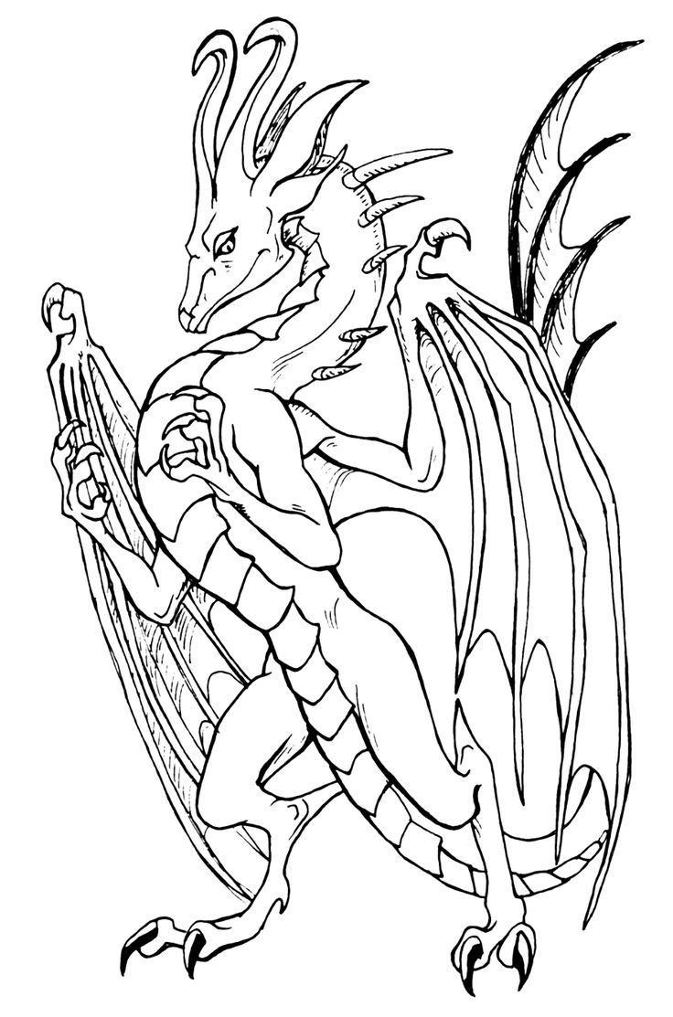 136 best lineart dragons images on pinterest dragon drawings