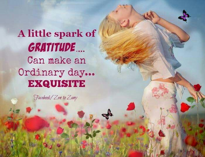 A little spark of gratitude... can make an ordinary day... exquisite