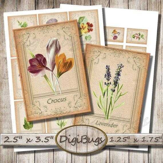 Garden Flowers, Printable Gift Cards, Digital Collage Sheet, Floral Aceo Cards, Vintage Gift Tags, Vintage Flower Labels, Instant Download