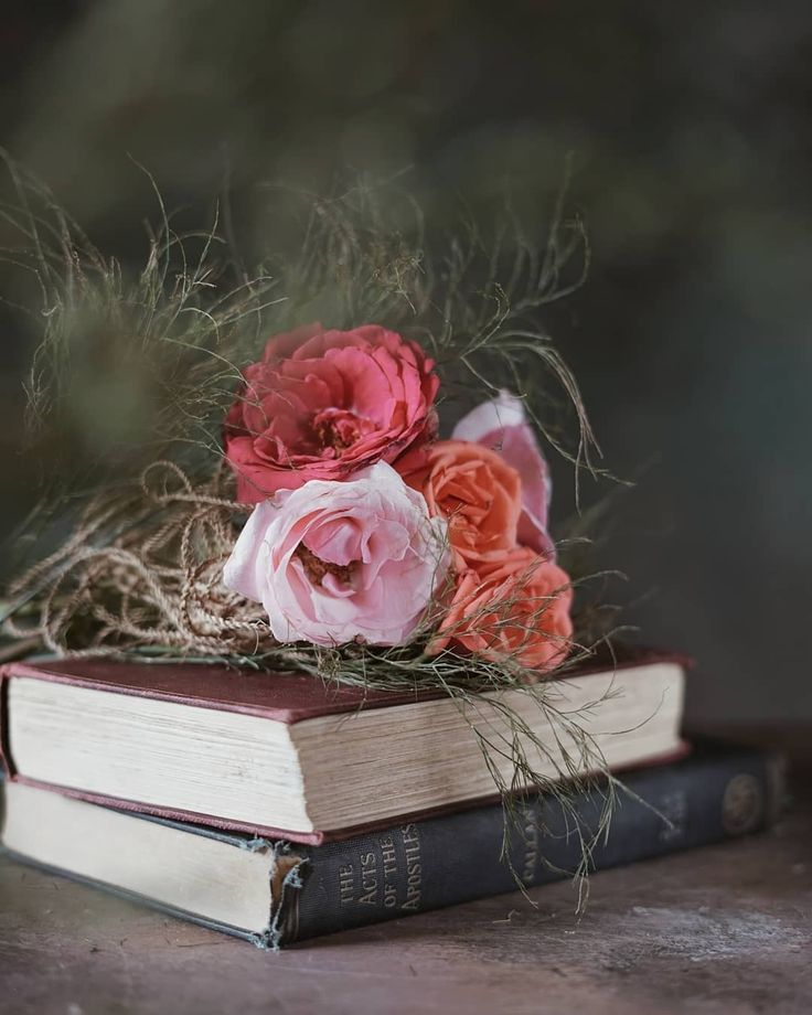 картинки для обложки книги цветы можно ярко передать