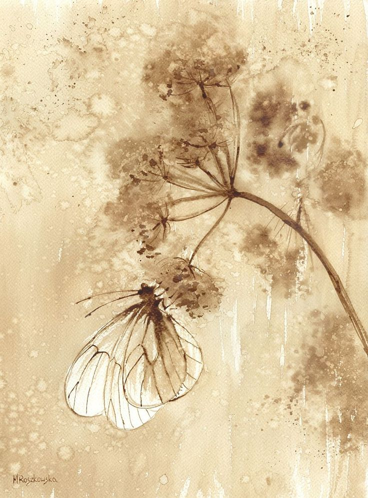 Motyl na baldachu - watercolour painted with coffee - Maria Roszkowska