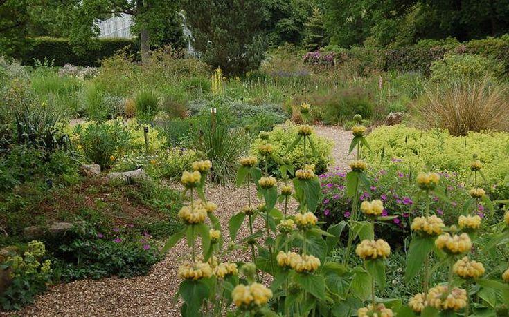 17 Best Ideas About Dry Garden On Pinterest Desert