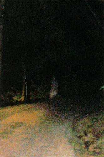 Thought you might be interested in this picture we took leaving Devils Den in Gettysburg this past summer. We never saw the person; we were just candidly taking pics with our digitals as we were leaving. We live in a haunted house and are familiar with orbs and ectoplasm. Just thought this was very interesting.- from Jeanie Brown