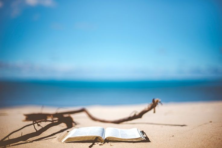 Book on the beach, sand and driftwood  #beach #sea #sand #books #photography #stockphotos #wallpapers