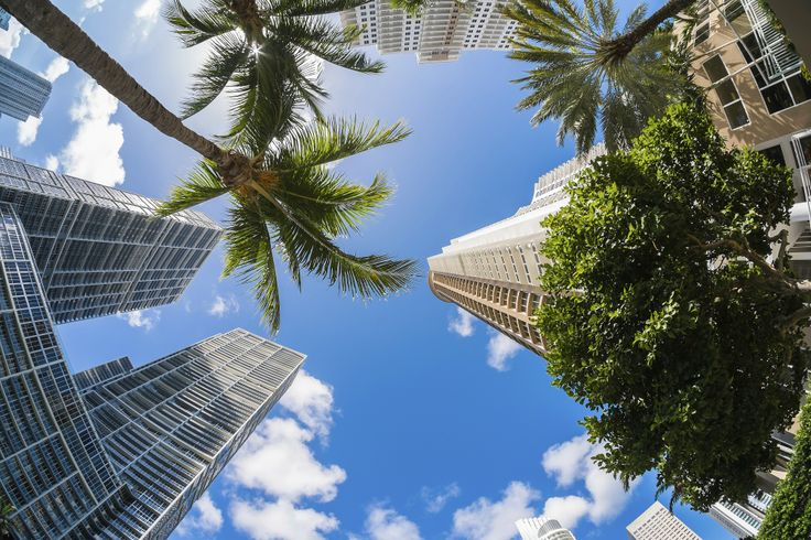 Miami Downtown / Florida