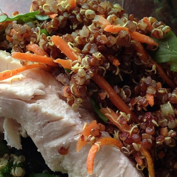 """16 Likes, 1 Comments - Margaret Lee R.Ac B.Sc RHN (@nutriacure) on Instagram: """"Red Quinoa with Chicken breast, shredded carrots, parsley on a bed of sautéed kale #lunch #eatclean…"""""""