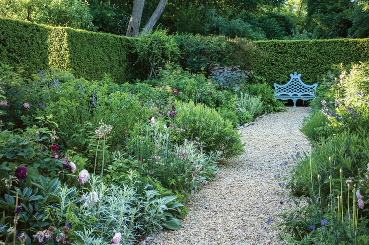 Anna Wintour's garden: yew hedge, contains borders with Tuscany Superb roses, peonies, allium, baptisia, artemisia and Buxton's Blue geranium.