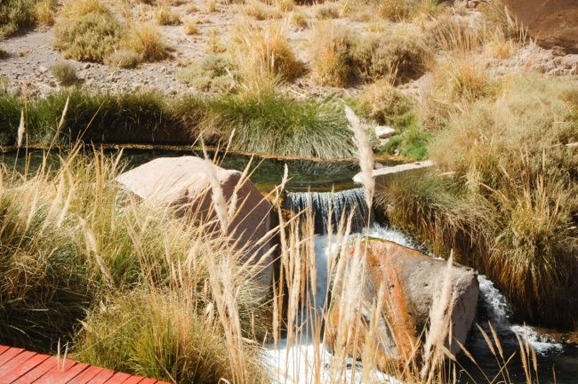 Termas de Puritama - Chile