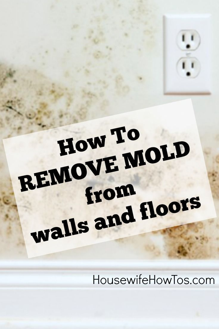 How To Remove Mold From Walls and Floors - Mold in the home can lead to respiratory and skin infections, and worse. Follow these steps to remove it from walls and floors then keep it away for good.