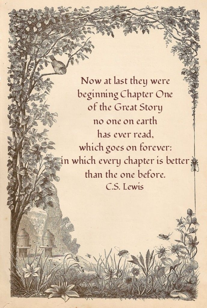 33 Inspiring Life Celebration Quotes. C.S. Lewis, Chapter One of the Great Story.