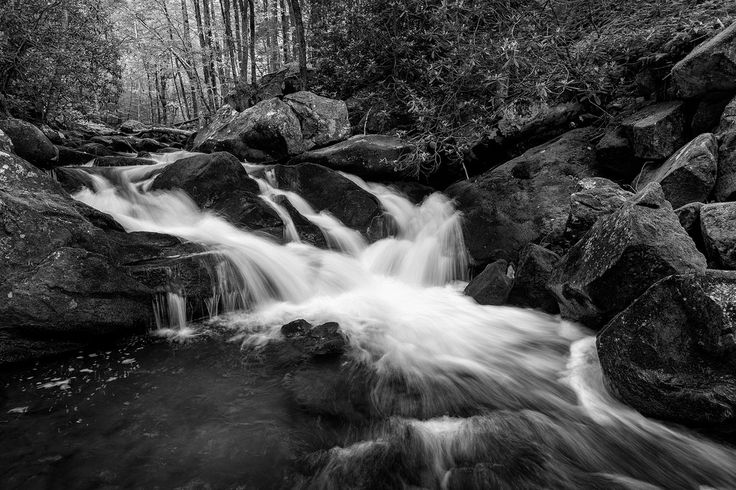John Cothron posted a photo:  Spring runoff on the Middle Prong Little River in the Tremont area of the Great Smoky Mountain National Park. The Middle Prong of the Little River is formed by the confluence of Lynn Camp Prong and Thunderhead Prong and flows another 6 miles till it empties in the Little River. The entire watershed of the Middle Prong is loosely known as Tremont.  (0.3 sec at f/10)  ©John Cothron 2017, If you are interested in licensing any of my images, please feel free to…
