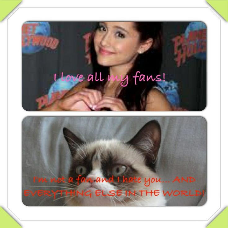 Ariana grande funny pictures