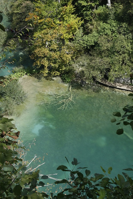 Plitvice Water, Croatia in colors