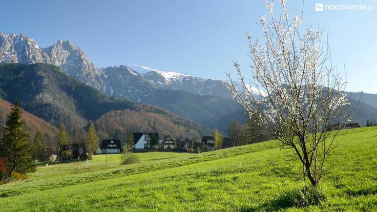Wiosenne widoki - Giewont, Zakopane / Poland #landscape #tatramountains #mountains