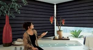Motorized Shades Can Be Beneficial in A Number of Ways #Technology has changed the way we work. #Motorization is bringing in convenience, increased privacy, #greenery and increased #home's value. Using #motorized #shades #Houston #Tx; you can do a number of things; without having to worry about literally anything.