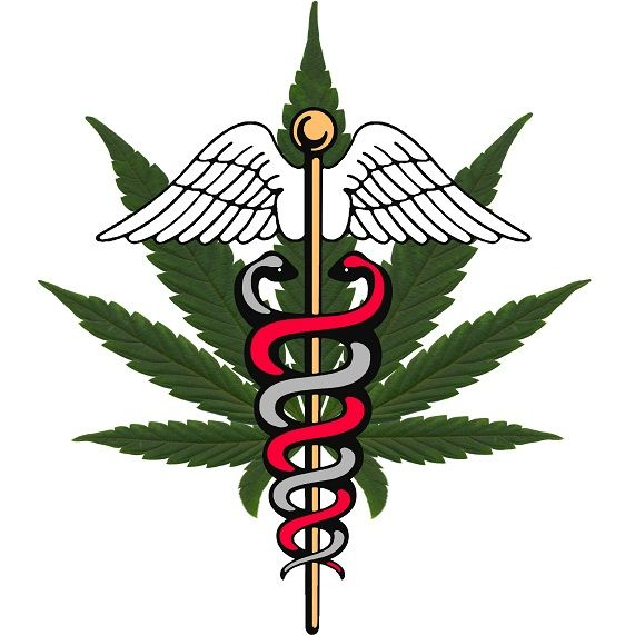 Medicinal cannabis is becoming more accepted throughout the USA and is even starting to be looked at seriously in Europe. Certain subject though remain extremely controversial such as the use of cannabis and its extracts on children.