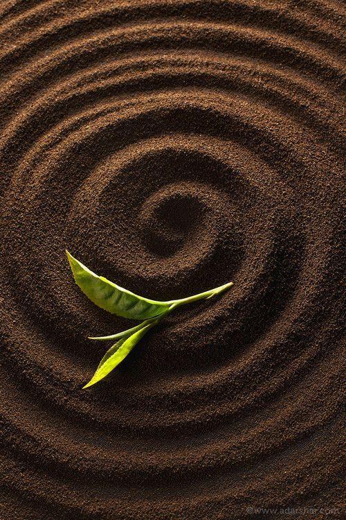 Spiral Sand Pattern with Leaf