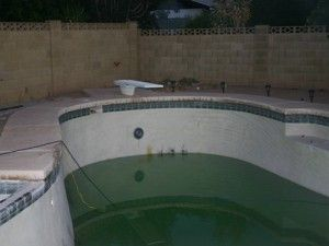 How to turn a green pool blue it can happen seemingly overnight one fine sunny arizona morning for Why does a swimming pool turn green